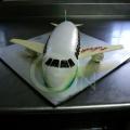 GF0001-Aeroplane Cake Design