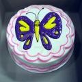 GF0041-Butterfly Cake