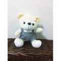 TB0011-bear Boy